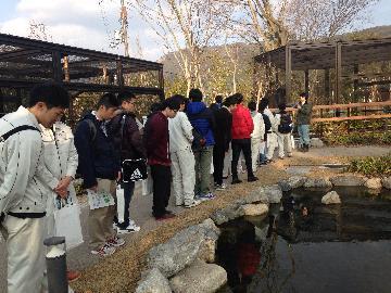 京都市動物園の園路整備の様子